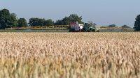 Działalność rolnicza